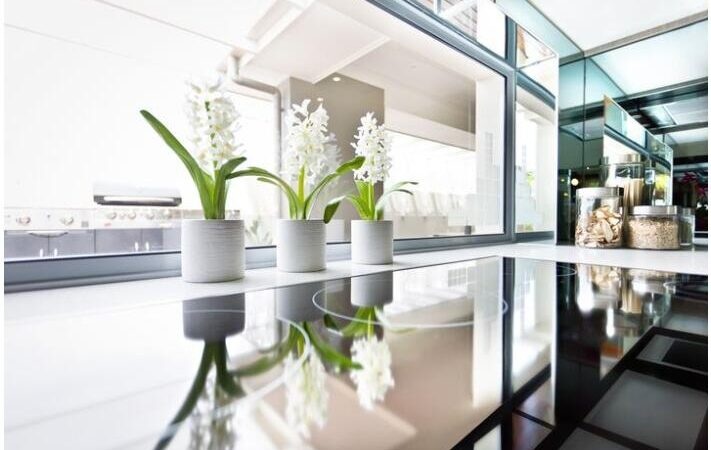 Plants and Flowers as Powerful Design Elements for Your Home
